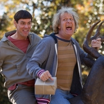 "Image for the Film programme ""Dumb and Dumber To"""