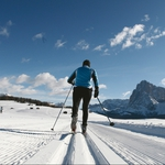"Image for the Sport programme ""Cross-Country Skiing Replay"""