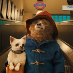 "Image for the Film programme ""Paddington"""