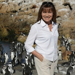 "Image for the Documentary programme ""Penguin A and E with Lorraine Kelly"""