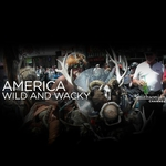"Image for the Documentary programme ""America: Wild and Wacky"""