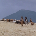 "Image for the Film programme ""Cattle Empire"""