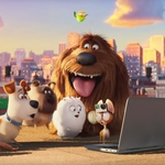 "Image for the Film programme ""The Secret Life of Pets"""