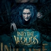 Image for Into the Woods: Stage to Screen