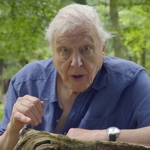 "Image for the Documentary programme ""David Attenborough's Richmond Park"""